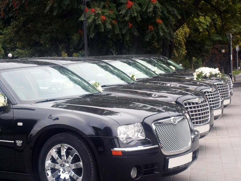 Огромный выбор авто и автобусов для торжеств Lux Car